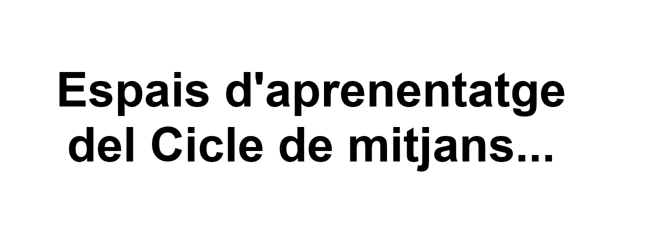 Carrusel Text Espais Cicle de mitjans